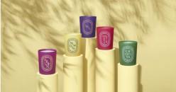 缤纷春日 彩色限量版香氛蜡烛 4月30日正式上市