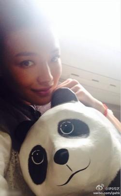 千只纸熊猫空降香港 明星个个都是Panda控
