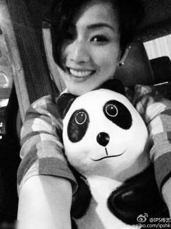 千只纸熊猫空降香港 明星个个都是Panda控(2)