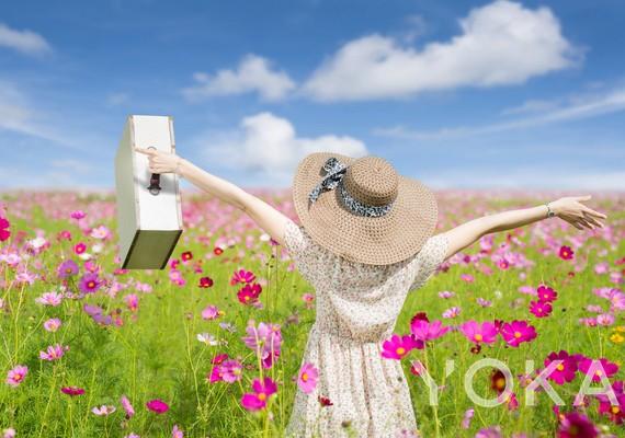 春日出游指南  迎着微风顺着花香飞向云彩