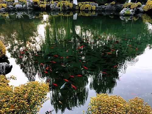 【陌上花開】~~~水入北湖去,舟從南浦回~~~