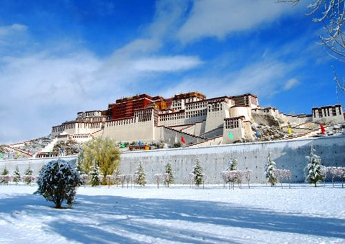 What you don't know the Lhasa four alternative